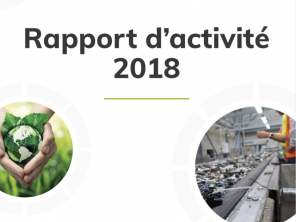 rapport-annuel-2018