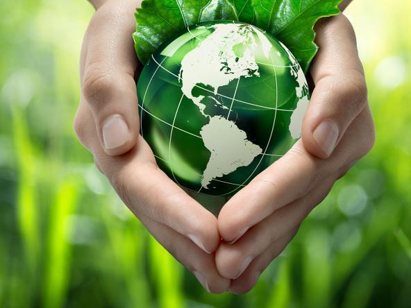 ecologic-02